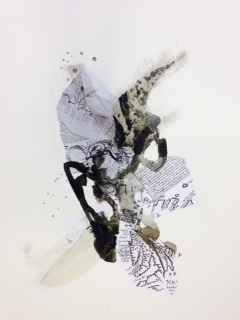 Newfoundland residency drawings, maps, ink, ecology #4