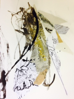Newfoundland residency drawings, maps, ink, ecology #6