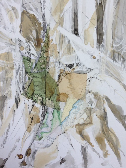 botanical 15 collage maps, graphite and ink on paper 11x14 Megan Dulcie Dill 2017